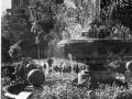 Фонтаны в парке. 1965.