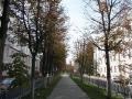 Улица Комсомольская, сентябрь 2012, фото agiss