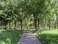 park-yubileinyi-01