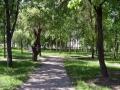 park-yubileinyi-02