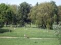 park-yubileinyi-07