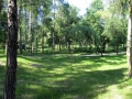 park-yubileinyi-foto-dasty5-06