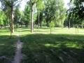 park-yubileinyi-foto-dasty5-07