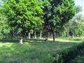 park-yubileinyi-foto-dasty5-09