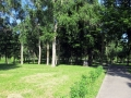 park-yubileinyi-foto-dasty5-12