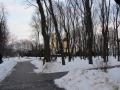 Аллеи парка Гомельского дворцово-паркового ансамбля, февраль 2013, фото agiss