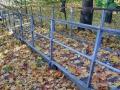 Аллеи парка Гомельского дворцово-паркового ансамбля, фото Onliner.by