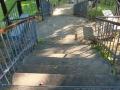 Аллеи парка Гомельского дворцово-паркового ансамбля