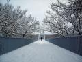 Пешеходный мост через Сож, фото Михаил Гут.