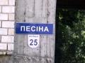 Улица Песина, 25