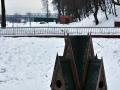 Лебяжий пруд. Январь 2013. Фото darkoman