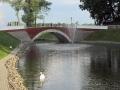 Лебяжий пруд. Июнь 2013. Фото agiss