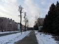 Улица Садовая, февраль 2013, фото agiss