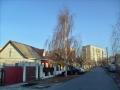 Улица Сенная, ноябрь 2011, фото agiss