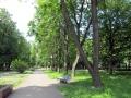 skver-shevchenko009