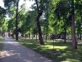 skver_gromyko-foto-dasty5-26