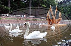 Лебяжий пруд в Гомельском дворцово-парковом ансамбле открыт после реконструкции