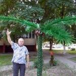 Кто сказал, что в Гомеле пальмы не растут?