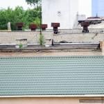 sady-na-kryshax-domov-v-gomel10