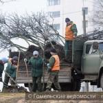 """Новые деревья высаживают на территории каскада озёр """"Волотова"""""""