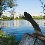 На Сельмашевских озерах увидели Лох-Несское чудовище
