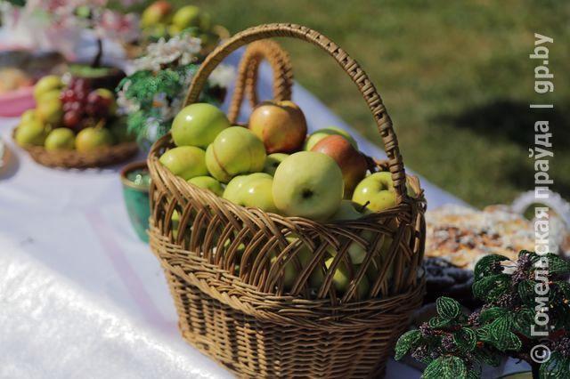 Традиционный праздник нового урожая прошел в яблоневом саду в Советском районе Гомеля