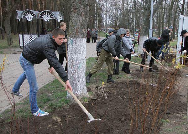 Октябрь в Гомеле посвятят озеленению