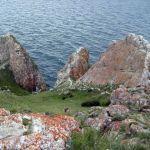 В библиотеке имени Герцена можно увидеть «Священное море Сибири»