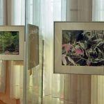 В музее ГДПА работает фотовыставка «Аллеями Гомельского парка»