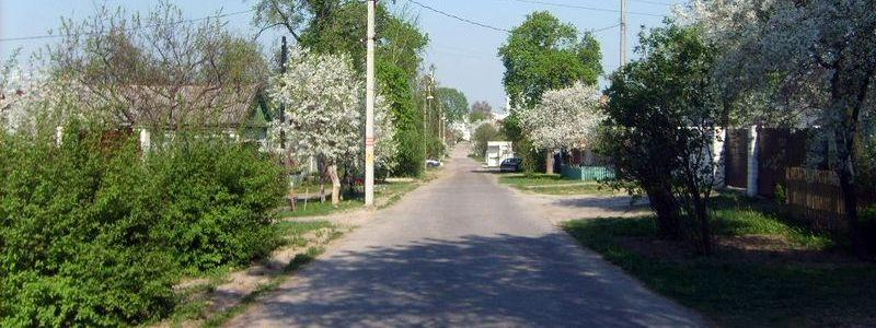 Крылова, улица