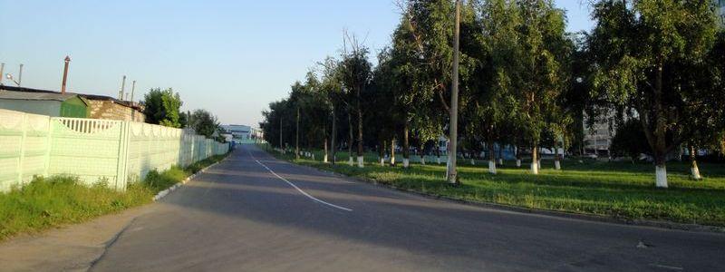 Маневича, улица