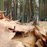 Молодёжь Советского района навела порядок в парке «Фестивальный»