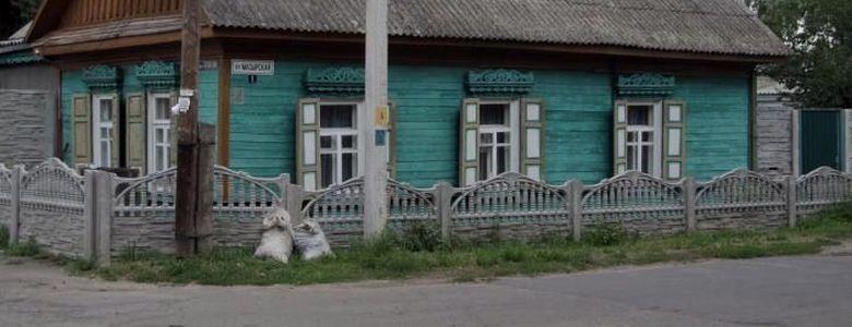 Мозырская, улица