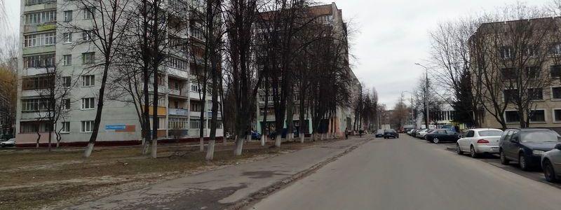 Тимофеенко, улица
