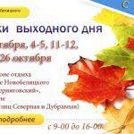 Ярмарки выходного дня в  Новобелицком районе