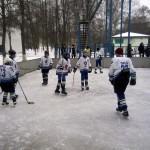 Районные соревнования по хоккею «Золотая шайба!»