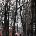 uzhe-v-subbotu-v-glavnom02