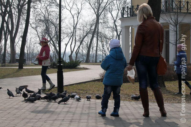 В Гомельском парке дети кормили птиц