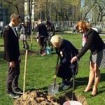 «Победы яблоневый цвет» украсил 16 учреждений образования в Гомеле