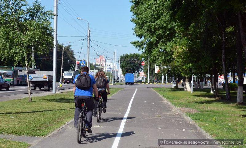 Велодорожек в Гомеле становится больше