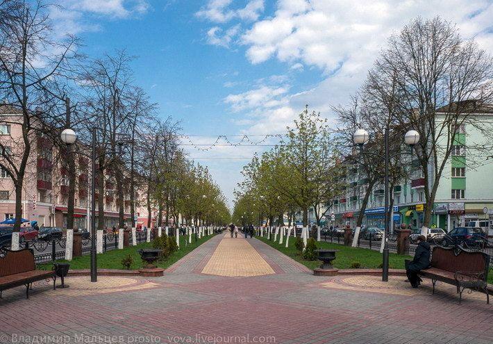 Центральная аллея проспекта Победы на один день превратится в Гомельский Арбат