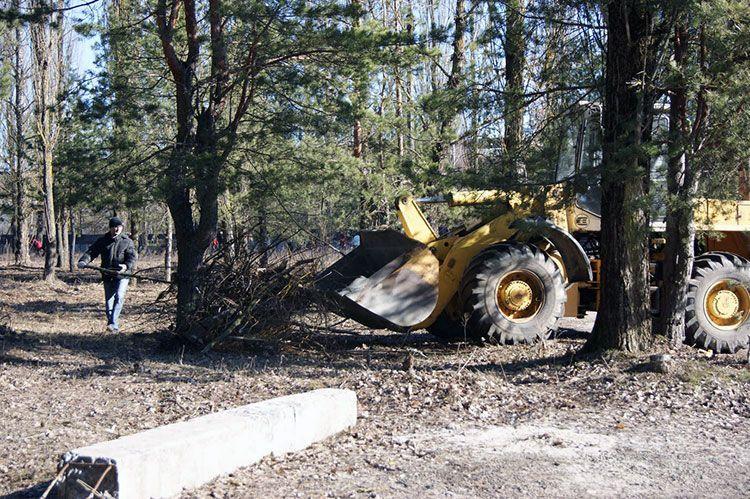Гомельские строители вывезли из леса вдоль Объездной десять самосвалов мусора