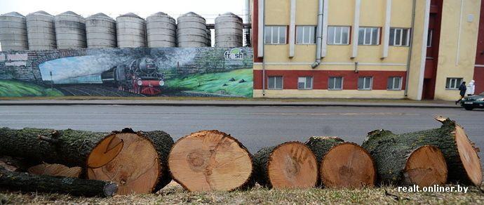 «Опять все срубят!» Гомельские урбанисты озабочены планами властей по реконструкции старых улиц