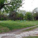 kosmicheskij-les-v-gomele-snova-rubyat17