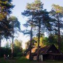 Гомельчане добиваются отмены строительства в лесопарковой зоне