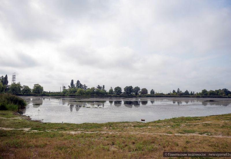 Озеро в Костюковке планируют благоустроить к новому сезону