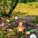 v-gomele-iskali-pokemonov-a4