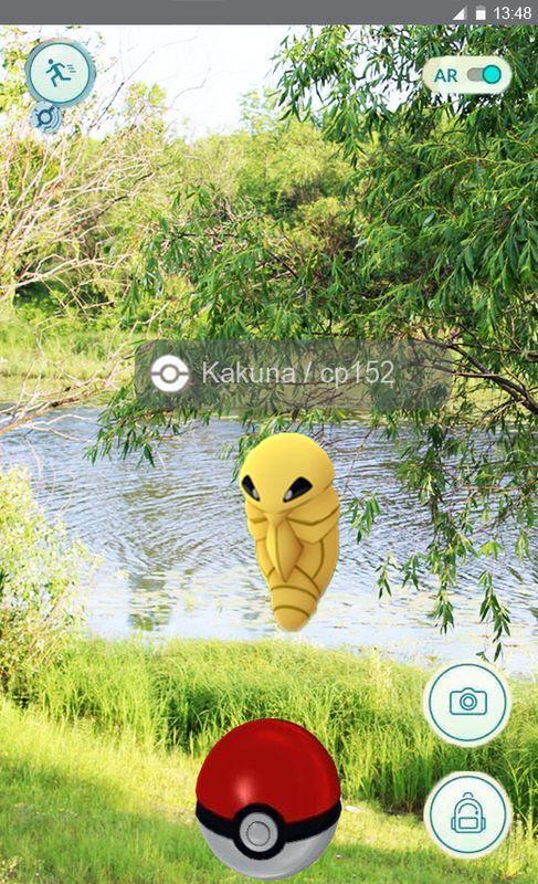 v-gomele-iskali-pokemonov-a9