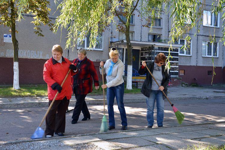 В Гомеле общественные активисты помогают наводить во дворах порядок