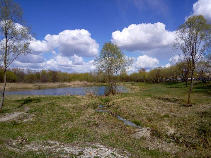 Возера Бабровае (Бабрыха) у добрае надвор'е. Фота красавіка 2017 г.